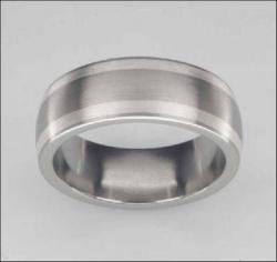 Titan Ringe mit Feinsilber T02-0284